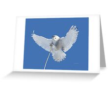 Precision is one of my many attributes Greeting Card