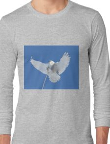 Precision is one of my many attributes Long Sleeve T-Shirt