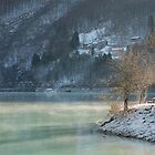 Mist on Green Lake by jojobob