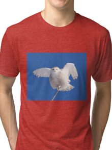 All hail to the goddess Tri-blend T-Shirt