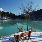 Bench in Snow  by jojobob