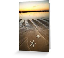 Two Little Starfish Greeting Card