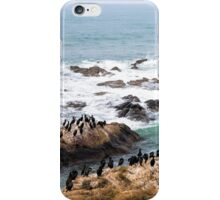 We All Can Get Along iPhone Case/Skin