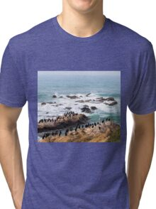 We All Can Get Along Tri-blend T-Shirt