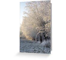 Winter Morning Greeting Card