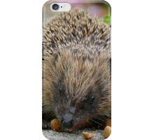 Hedgehog NZ iPhone Case/Skin