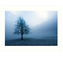 moody winter tree Art Print