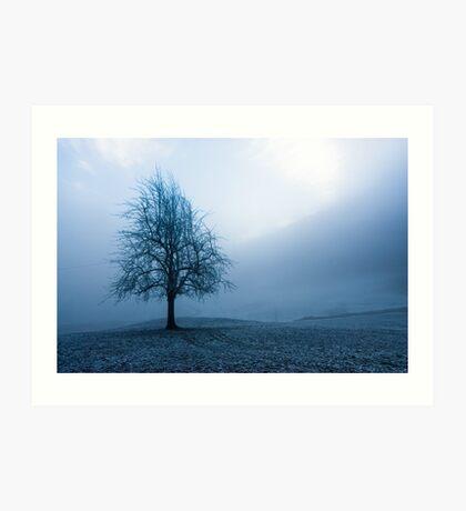 moody winter tree Art Print