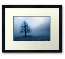 moody winter tree Framed Print
