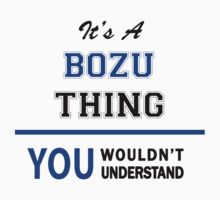 It's a BOZU thing, you wouldn't understand !! by thinging