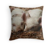 Baby Piglets Throw Pillow