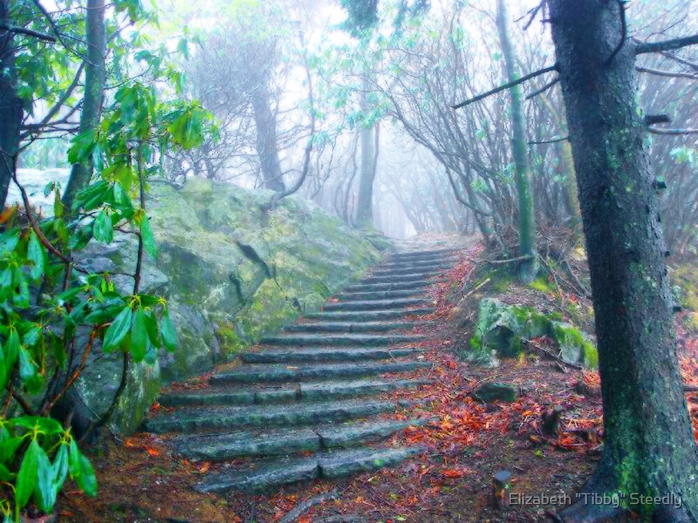 Stairway to Heaven by Tibby Steedly