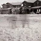Snow Games by Kerplunk409