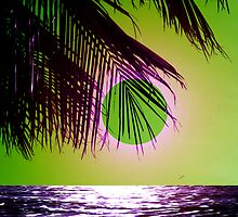 The Purple Beach by Juana Maria Garcia Domenech
