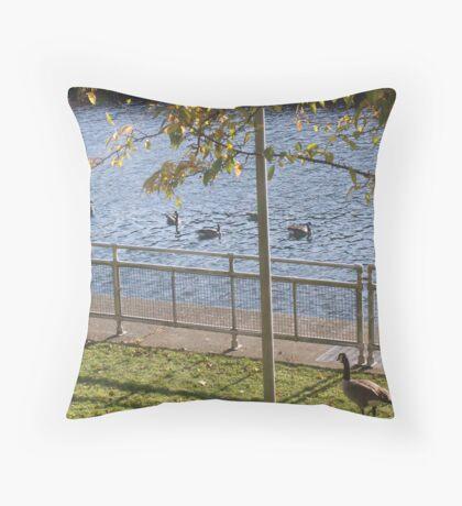 Geese Followers Throw Pillow