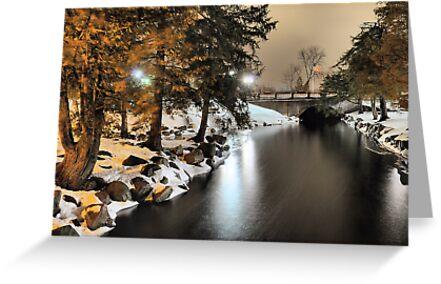 Fenton Banks of the Shiawasee River by Mark Bolen