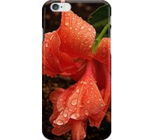 A Hibiscus - a new addition to the garden.........! iPhone Case/Skin