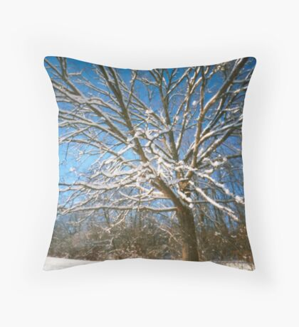 The Morning After, No. 3 Throw Pillow