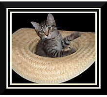 Cat in a Hat Photographic Print
