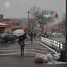 Astoria Snow by Bernadette Claffey