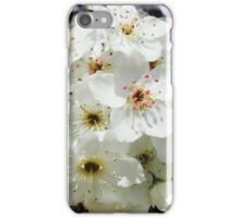 Pear Tree Blossom iPhone Case/Skin