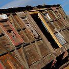 Boxcar #608 by Pamela Hubbard