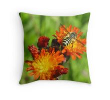 Taste the Sweetness Throw Pillow