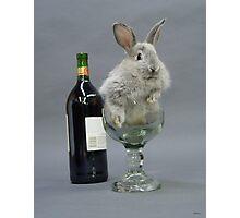 Party Animal Photographic Print