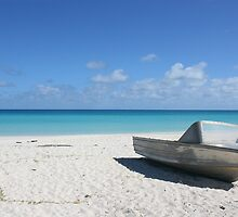 beaches of the south pacific  by teegan