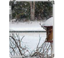 Bird House in the Snow iPad Case/Skin