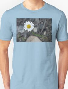 Daisy Blooming in the Rocky Mountains T-Shirt