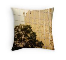 Building on the Building Throw Pillow
