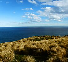 Lover's Leap, NZ by AlisonOneL