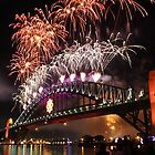 New Year's Fireworks by Tim Beasley