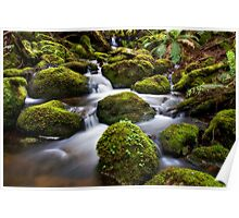 Upper Taggerty RD Creek Poster