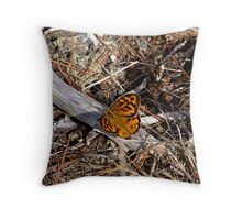 Male Heteronympha Merope  Throw Pillow