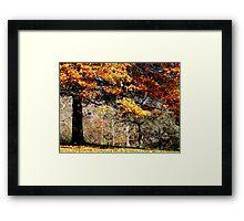 Autumn air Framed Print