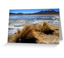 Altiplano lake under ice, southern Bolivia Greeting Card