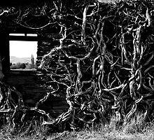 Overgrown by AlisonOneL