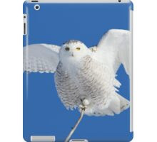 All hail to the goddess iPad Case/Skin