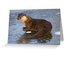 Otterly Freezing! Greeting Card