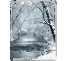 Winter Snow and Creek iPad Case/Skin