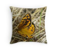 Common Brown Butterfly  Throw Pillow