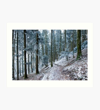 frosty forest Art Print