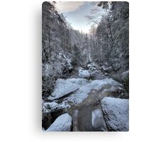 streambed in winter Canvas Print