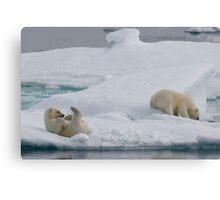 Polar Play Time Canvas Print