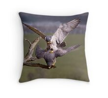 Mating Peregrines Throw Pillow