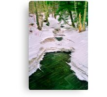 Winter With Redfield Canvas Print