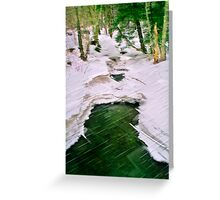 Winter With Redfield Greeting Card