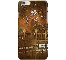 Iron Fence iPhone Case/Skin